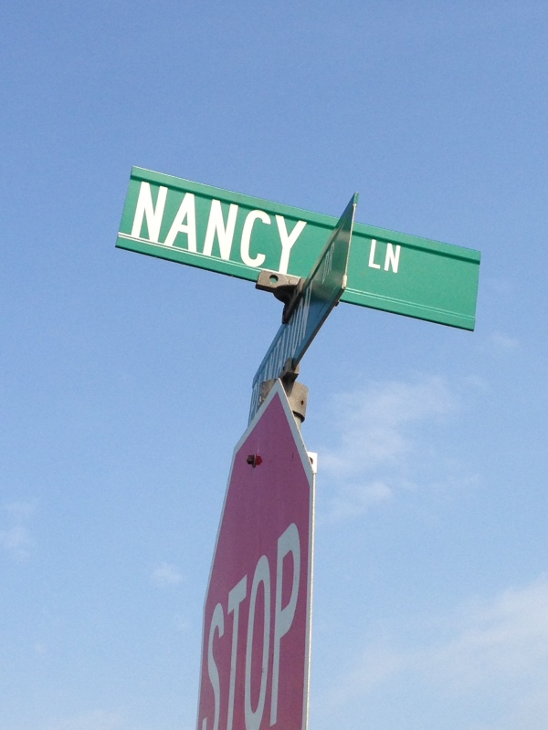 nancy lane