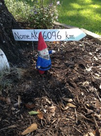 Gnome Away From Nome
